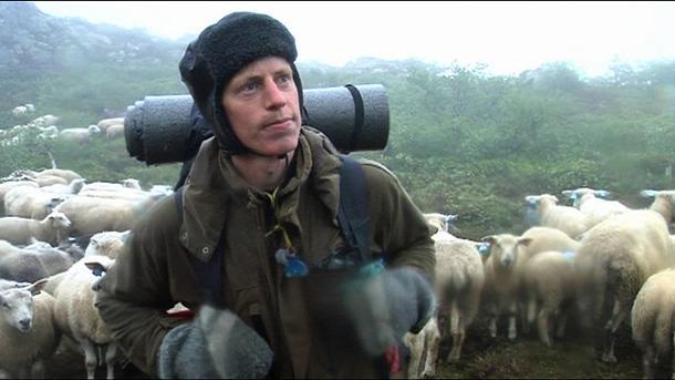 Sauebonde Jostein Omli har ikke annet valg enn å slippe sauene i rovdyrområdet. (Foto: Mette Moslet Kjesbu, NRK)
