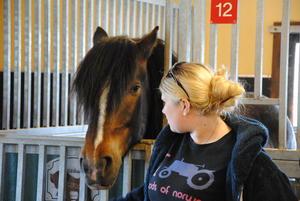 Hest og hovslager er et av programfagene på Valle. Valle har her et godt samarbeid  med Norsk Hestesenter på Starum.
