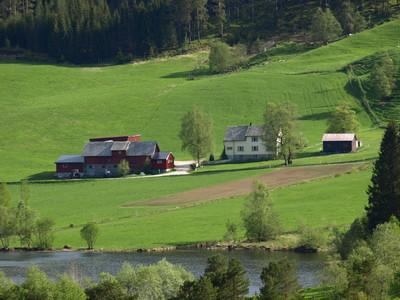 Matprodusentar i distrikta treng verkemidlar som er tilpassa areala og topgrafien der maten skal produserast.