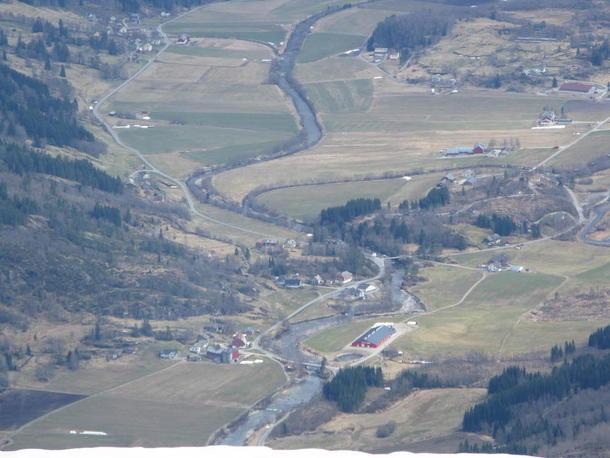 Illustrasjonsfoto: Stardalen er eitt at områda som er hardt råka av vinterskade.