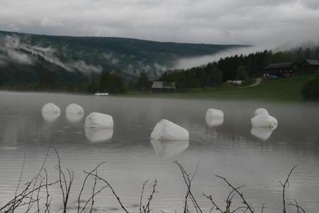 Flytende rundballer vil vi unngå. Få alt på trygg grunn før flommen kommer. Bildet er fra Rendalen, Innlandet.