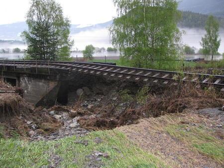 Augla i Sør-Fron på ville veger. Foto: Eivind Bergseth, Norsk Landbruksrådgiving Gudbrandsdalen