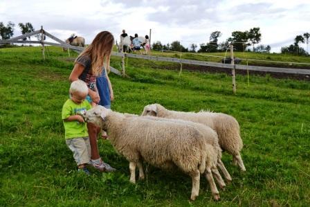Bondelaget vil gjennom Åpen Gård gi folk opplevelser og spre kunnskap om landbruk.