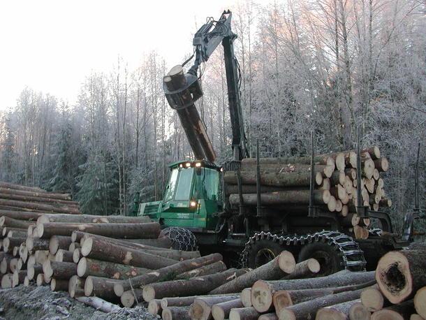 En massiv gjenoppretting av de europeiske (boreale) skogene, med stort innslag av granskog vil ta vekk mye av det overskytende atmosfæriske karbonet og virke positivt i en ny klimavirkelighet..