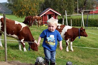 Åpen gård gir unger og voksne nærkontakt med dyr og kunnskap om gårdsdrift. (Arkivbilde)