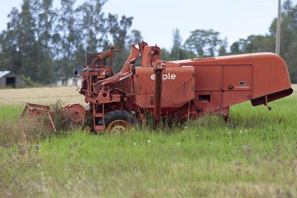 .. det er grunn til å undre seg over hvor lang tid det tar å bygge opp igjen et nedkjørt landbruk, illustrasjonsfoto; Mats Olsen.