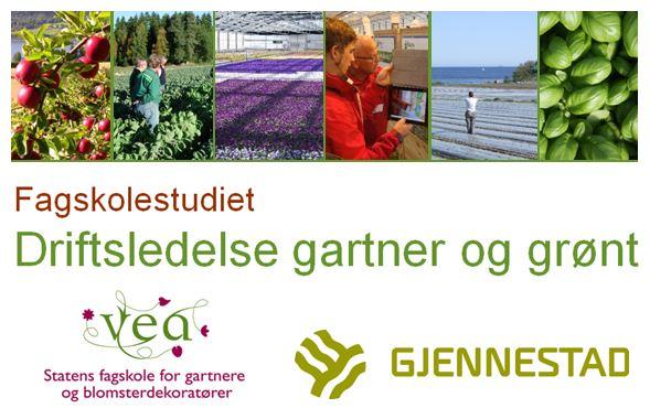 Driftsledelse gartner og grønt