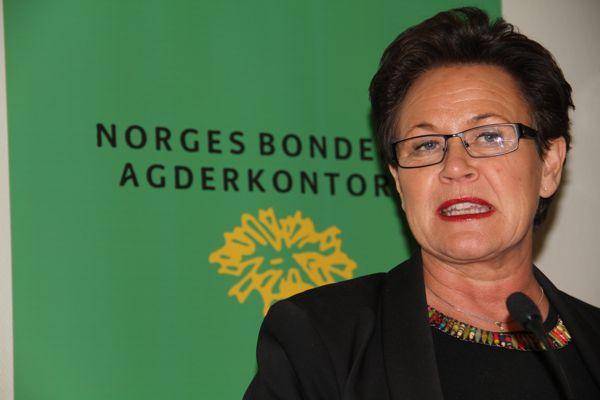 Ingunn Foss fra Høyre er en av politikerne som deltar i utspørringa som er siste post på seminaret.