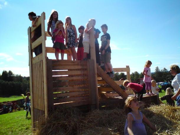 Barna hopper i høyet på Åpen Gård på Vaaler i Eidsvoll 2010.
