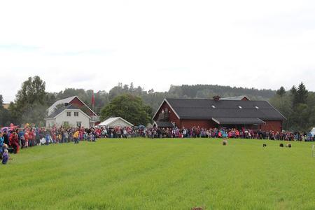 Gjeterhunoppvisning på Åpen Gård i Eidsvoll