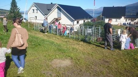 Folk koste seg i finværet i Balsfjord