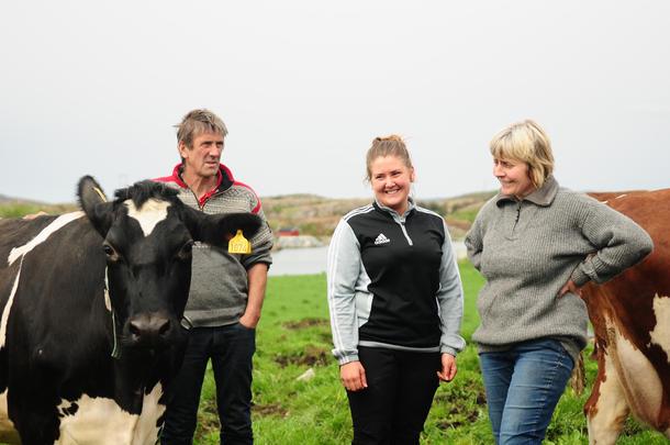 Godt beite: På Arnøya i Nærøy kommune har familien Arnø 20 årskyr, og beiteressursen utnyttes svært godt.