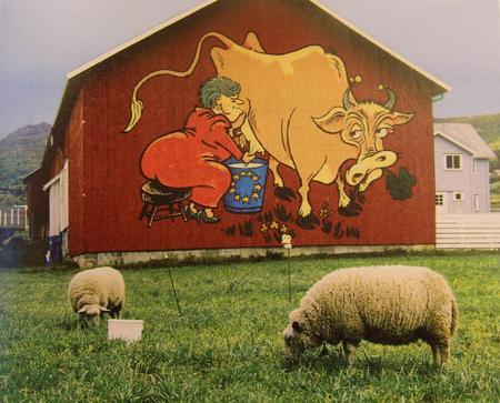 """Laila og Leif Jan Hammerstad i Valdres markedert sin EU-motstand på låveveggen. Foto hentet fra boka """"Folket sa NEI"""" av Dag Seierstad."""