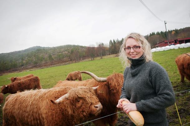 HØYLANDSFE: Tone Aune (29) og mannen har 18 høylandsfe som gresser utenfor gården. Aune sier det er koselige dyr som krever relativt lite daglig stell.