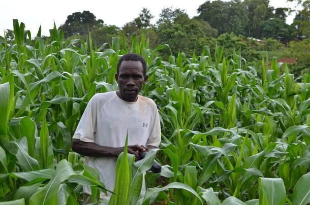 Bonde i Malawi