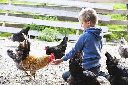IPT barn og dyr
