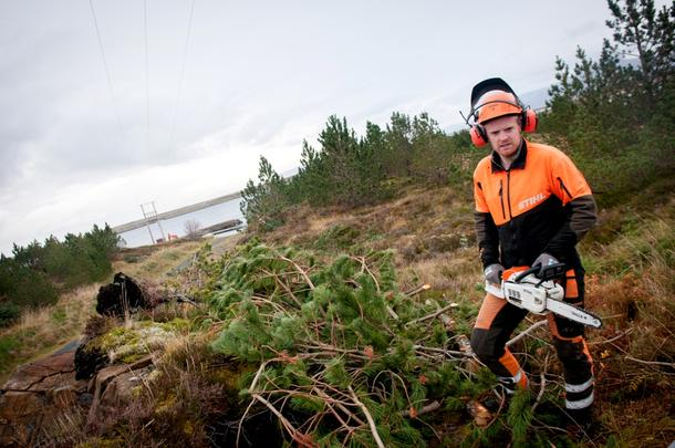 Stian Aakre har oppdrag for NTE og rydder under skog i linjetraseene.