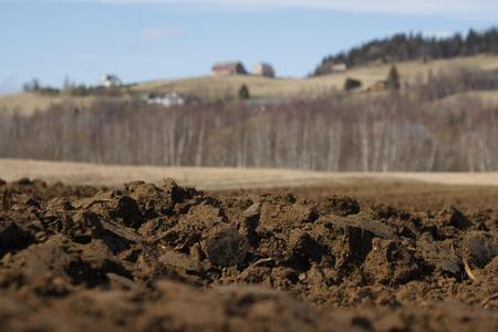 Nypløyd jord av Sissel Berge