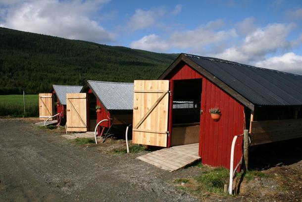 Revefarm. Foto: Norges Pelsdyralslag