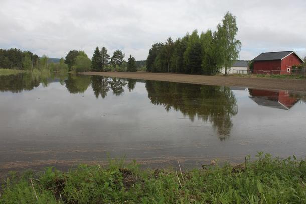 Dette bildet ble tatt i Buskerud denne uka.