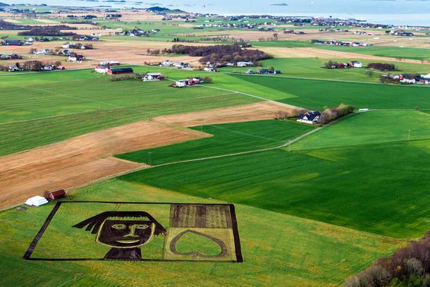 """Åkergrønn er lagd med plog, harv og kalksand av Arne og Reidar Hernes. - Bildet er 104 x 104 meter stort og vi brukte åkerpassar og gjerdepålar for å måle opp. Eg brukte 60 åkerpinnar for å navigere då eg køyrde opp ansiktet. Vi brukte tre dagar, fortel Arne Hernes. Verket er inspirert av Hannah Ryggens vevnad """"Potteblått"""". Hannah Ryggen: Potteblått, 1963 (utsnitt) © Hannah Ryggen / BONO 2015 Foto: Dan Ågren/LANDART Fosen"""