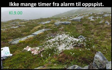 Ikke mange timer fra alarm til oppspist Foto: Rødsjøprosjektet
