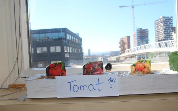 Tomater i vinduet på landbrukets hus