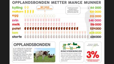 Opplandsbonden mette mange flere munner enn Opplandsinnbyggerne.