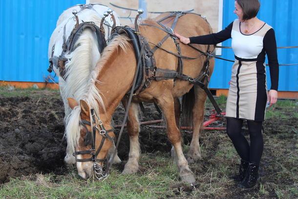 Hestene får en peptalk av byråd Hanna Marcussen.
