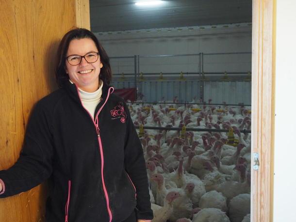fd1caacd De driver en gård med kalkun-produksjon, en gård med  slaktekylling-produksjon, og på den tredje gården de driver planlegger de  ammekuproduksjon for å ...