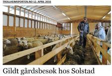 Omtale i Trollheimsporten.no 12. april - klikk på bildet