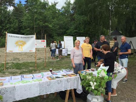 Fåvangdågån 2016