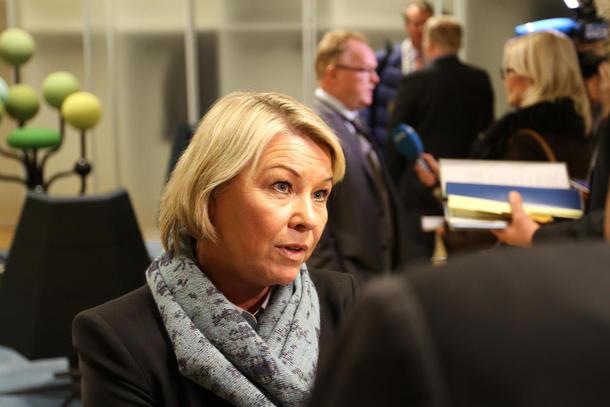 Norges Bondelag har bedd næringsminister Monica Mæland om ikkje å gje innrømmingar til Mercosur på landbruksområdet.