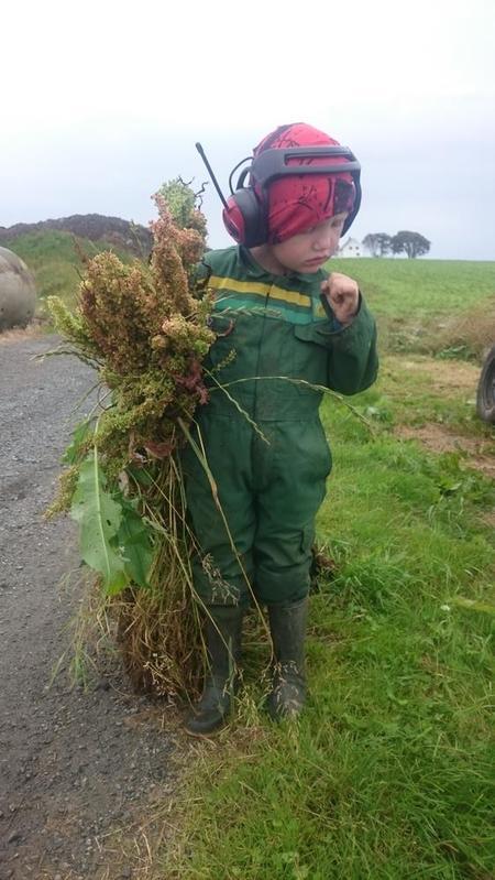 ung bonde