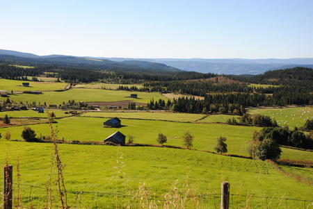 På Rollstulen er det både aktiv seterdrift og store mengder fôrressurser til mange Fåvanggarder.