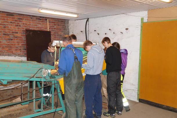 Lærar Nils Jørgen Helgheim og elevane hadde ein travel dag med å sortere poteter.