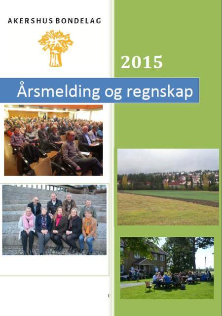 Årsmelding AB 2015