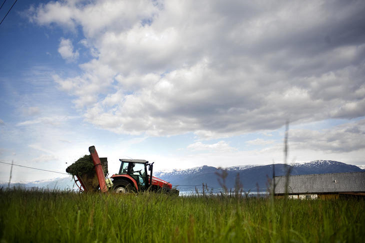 Traktor med fôrhøster
