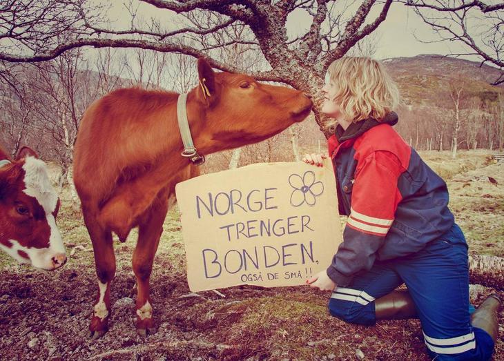 Norge trenger bonden Lofoten