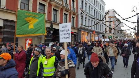 Ulveaksjon Oslo 4. januar 2017