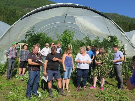 Styret i Norges Bondelag var på Vestlandstur i august med innlagt besøk mellom anna hos Wald Lyslo og Brit Brækhus i Innvik.  Dei satsar mellom anna på bringebær.