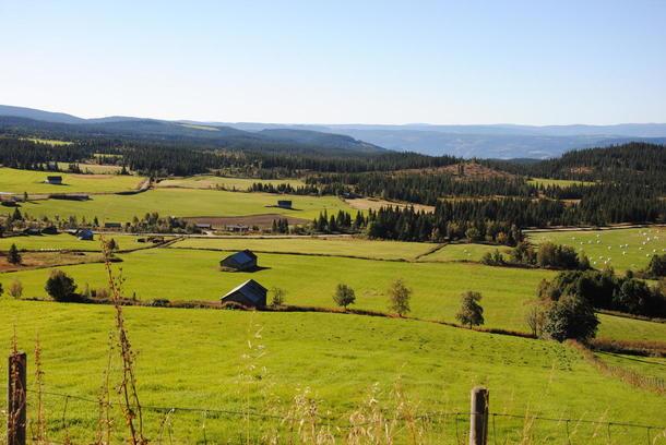 Dyrking av store arealer i Fåvangfjellet viser et godt eksempel på bruk av norske ressurser til matproduksjon.