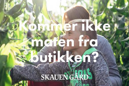 Skauen 4H gård i Onsøy