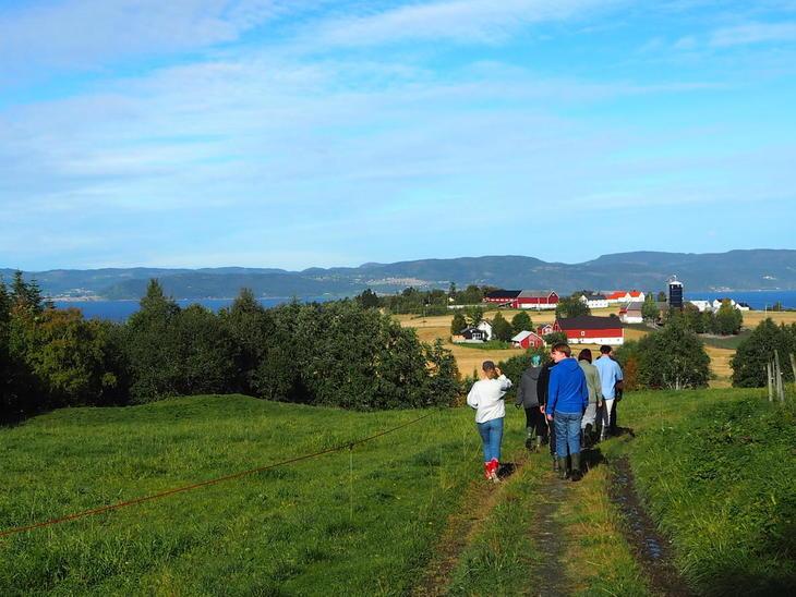 Ut på tur i flott landskap med grønne enger og gårdsbruk med røde og hvite bygninger.