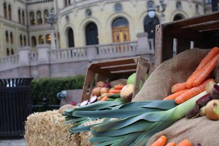 Grønnsaker foran Stortinget