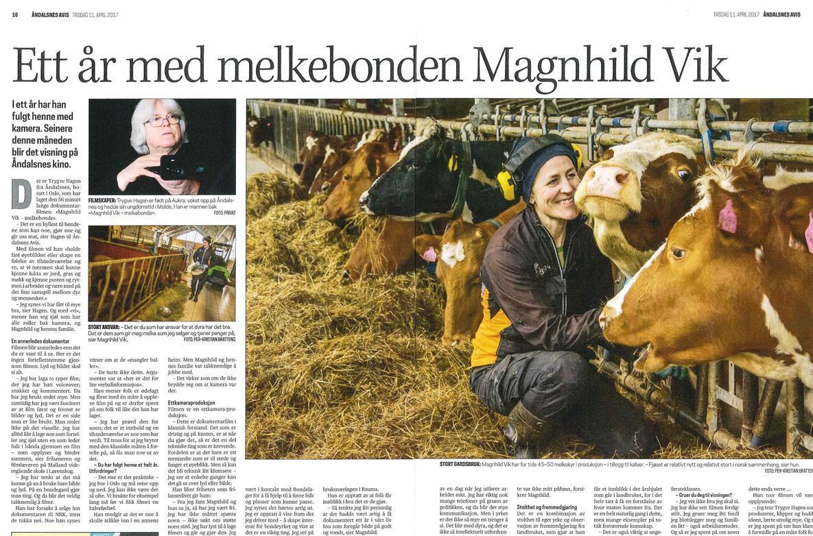 Ett Ar Med Melkebonden Magnhild Vik Norges Bondelag
