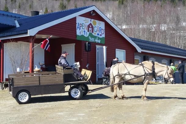 Velkomstkomité bestående av hest, kusk og kjerre!
