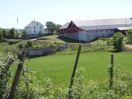 Illustrasjonsbilde gård