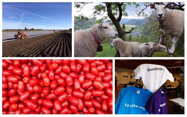 Rogaland bondelag skal for fyrste gong ha stand på Gladmat-festivalen i Stavanger.