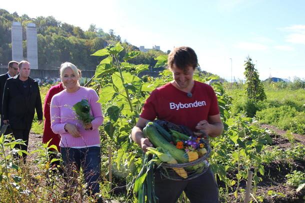 Kronprinsesse Mette Marit høster grønnsaker på Losæter med Bybonde Andreas Capjon.